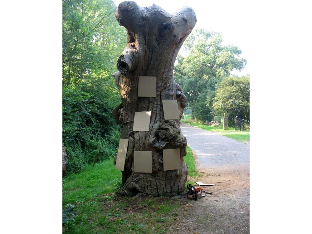Boekenboom de (B)ruilboom te Ruurlo