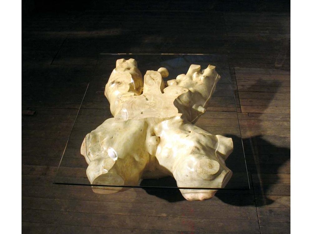 Tafel van wortel van conifeer met glazen blad